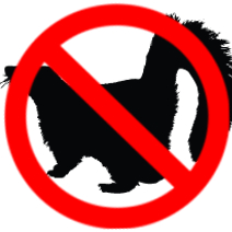 skunk wildlife removal vaughan